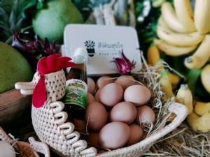 ช้อปเปลี่ยนโลก! เปิดตัวแอพ Thai Organic Platform ยกระดับห่วงโซ่อาหารอินทรีย์ทั้งระบบ