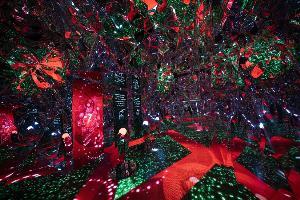 """ว้าว! จัดเต็มแสงสีเสียง เนรมิตย่านราชประสงค์เป็นแดน""""ดอกไม้แห่งความฝัน"""" สุดตื่นตา"""