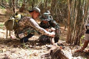 เจ้าหน้าที่หน่วยพิทักษ์วังครก จับพรานป่ายิงเสือไฟในเขตภาชี