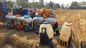 เริ่มแล้ว! พัฒนาที่ดินอุทัยธานีออกรณรงค์งดเผาตอซังพืชหนุนไถกลบลดต้นทุนบำรุงดิน