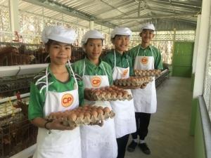 """""""3 ทศวรรษ"""" โรงเรียนไก่ไข่ฯ ซีพีเอฟเติมอาหารสมองเด็กไทย เติบโตสมวัยทั่วปท."""