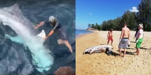 """""""ดร.ธรณ์"""" โพสต์สรุปความเสียหายท้องทะเลไทยพบส่วนใหญเป็นฝีมือมนุษย์ วอนคนรักทะเลช่วยดูแล"""