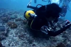 สุดทน! พฤติกรรมไกด์สุดแสบ นำนักท่องเที่ยวนอนทับปะการังถ่ายรูป