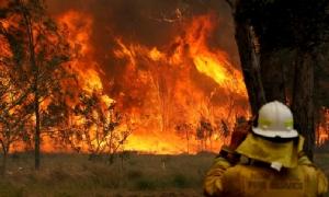 """นิทานเรื่องเศร้า! """"ดร.ธรณ์"""" โพสต์เห็นภาพไฟป่ามรณะประเทศออสเตรเลีย เผยอาจไม่มีคำเตือนจากธรรมชาติอีก"""