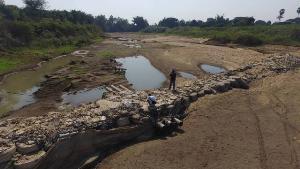 น้ำยมบางระกำแห้งเหนือบิ๊กแบ็กยังมีแต่ทราย น้ำน่าน-น้ำยมพิจิตรขอดก้นตั้งแต่ พ.ย. 62