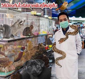 """หมอแล็บเตือน! วิธีการป้องกัน """"โคโรนาไวรัสสายพันธุ์ใหม่"""" ย้ำยังไม่เป็นโรคระบาดในไทย"""