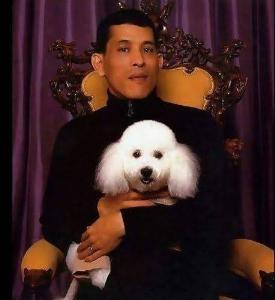 สุนัขทรงเลี้ยงหลากสายพันธุ์ของราชวงศ์ไทย