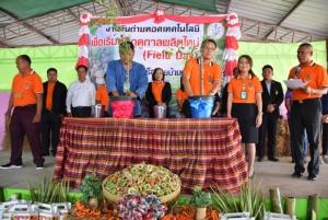 """โคราชแล้งพ่นพิษหนัก! แหล่ง """"ปลูกมะขามเทศ"""" แห่งใหญ่ของไทยอ่วม ผลผลิตน้อยรายได้ลดฮวบ"""