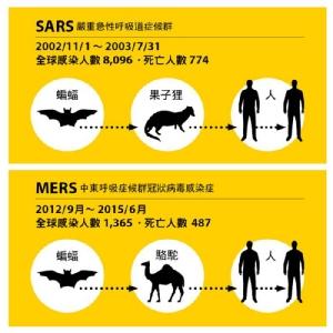 ไวรัสโคโรนาสายพันธุ์ใหม่ 2019-nCoV  ระบาดช่วงกระแสเดินทางเทศกาลตรุษจีน