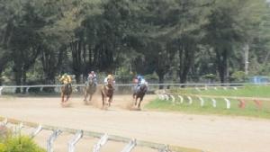 """ครั้งแรกในไทย จัดแข่งม้ากีฬาไร้การพนันที่อุดรฯ ชิงถ้วย """"บิ๊กป้อม"""""""