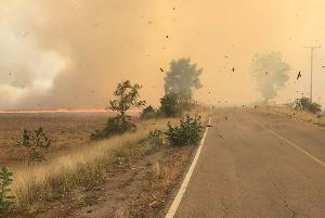 คนบ่นก็บ่นไป คนเผาก็เผาไป...เผยภาพเผานาที่วิเชียรบุรี ทำแทบมองไม่เห็นถนน