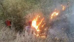 เปิดใจผู้ว่าฯหมูป่า รับแก้ไฟป่าลำปางไม่ง่ายเหมือนเชียงราย-พะเยา วันนี้ยังไม่ได้งบแม้แต่บาทเดียว