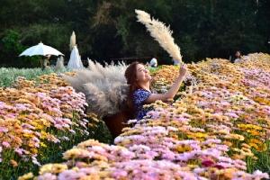 """ยลดอกไม้บานสะพรั่ง """"บ้านห้วยสำราญ"""" แหล่งปลูกไม้ดอกใหญ่ที่สุดในภาคอีสาน"""