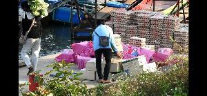 ออเดอร์หน้ากากอนามัยทะลัก เขตเศรษฐกิจพิเศษฯ สั่งข้ามโขงตุนไม่อั้น-จีนข้ามแดนซื้อพม่าเกลี้ยงคลัง