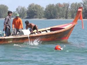 เขตห้ามล่าสัตว์ป่าหมู่เกาะลิบง วางทุ่นคุ้มครองหญ้าทะเลเพื่อแหล่งอาหารพะยูนที่ยั่งยืน