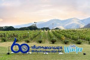 """""""การบินไทย"""" และ """"ททท."""" ผนึกพลังกับแคมเปญ 60 เส้นทางความสุข@เมืองไทย เดอะซีรีย์"""