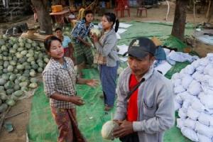 เกษตรกรพม่ากังวลสินค้าเริ่มขายไม่ออกไวรัสโคโรนากระทบส่งออกจีน