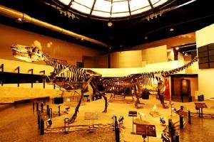 พิพิธภัณฑ์สิรินธร จังหวัดกาฬสินธุ์