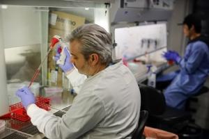 คืบหน้าอีกขั้น!ทีมวิจัยเริ่มทดสอบวัคซีนรักษาไวรัสโคโรนากับสัตว์