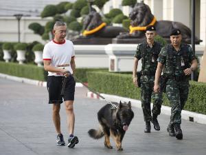 """""""บิ๊กแดง"""" เทียบสุนัขทหาร ไม่เห่าพร่ำเพรื่อ คงไม่อยากเป็นมนุษย์สร้างความเกลียดชัง"""