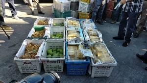 ปปส.รวบพ่อค้าซุกยาบ้ากว่าล้านเม็ดในลังผลไม้ ส่งลงใต้