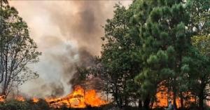 พิษไฟป่า ทำภูกระดึงเสียหายกว่า 3,400 ไร่ จนท.คุมได้แล้ว  สามารถเที่ยวได้ตามปกติ