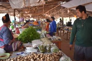 """แล้งจัด! อาหารป่าที่อีสานหายากต้องนำเข้าจากเมืองจันทน์ """"จักจั่น"""" โลละ 450 บาท"""