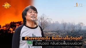 [คลิป] #Saveภูกระดึง คือโอกาสในวิกฤต!! ป่าสนวอด กลับช่วยฟื้นระบบนิเวศ