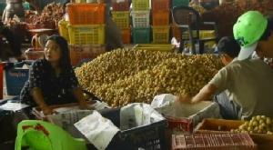 โควิด-19 พ่นพิษ! ล้งรับซื้อผลไม้เมืองจันท์ชะลอรับซื้อผลผลิต หวั่นกระทบส่งออกหลายหมื่นล้าน