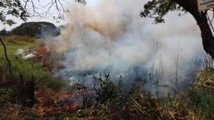 ระทึก! เกิดไฟไหม้ป่าอ้อกลางเมืองชัยนาท