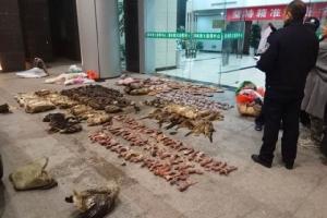 จีนรับรองกฎหมายห้ามกิน ค้า ขนส่งสัตว์ป่า