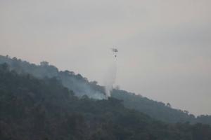เปิดปฏิบัติการดับไฟป่าภาคตะวันออก ตราด-สระแก้ว-จันทบุรี พบสถานการณ์ดีขึ้น