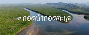 โครงการกอดป่ากอดทะเล เลือกกระบี่เป็นพื้นที่แรกของโครงการ (ภาพ : เพจกอดป่ากอดทะเล)