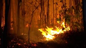 เร่งสกัดไฟป่าเขาสวนกวาง ไม่ให้ลามไหม้เข้าเขตสวนสัตว์ขอนแก่น