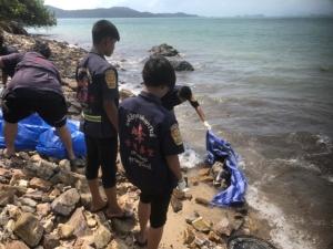 สุดอนาถ! โลมาอิรวดีถูกใบพัดเรือตัดหางขาด ท้องแตก คลื่นซัดเกยชายหาดเกาะสมุย