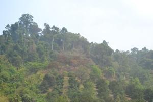 ควันหลงไฟป่าจันทบุรี ทำค่า PM 2.5 พื้นที่ 2อำเภอชายแดนเข้าขั้นสีแดง
