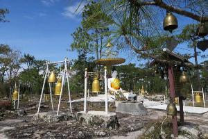"""1 เม.ย. ปิดเที่ยว """"ภูกระดึง"""" พิษไฟป่า-ภัยแล้ง ทำเลื่อนปิดป่าเร็วขึ้น 2 เดือน"""