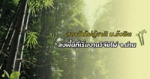 """""""ไผ่กู้ชาติ""""! ม.รังสิตคิดใหญ่ หวังคืนพื้นที่ป่า ฟื้นเศรษฐกิจ สร้างรายได้ชุมชน"""