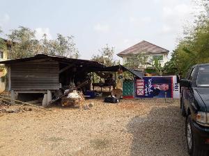 ชื่มชม! สาวไทยหลังกลับจากเกาหลีใต้ กักตัวเองนาน 1 เดือน ไปใช้ชีวิตในบ้านสวน