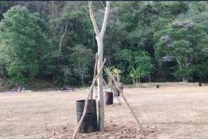 ชาวบ้านกระบี่โวยต้นไม้โผล่กลางสนามฟุตบอล หมวดการทางแจงเป็นพื้นที่สำหรับสร้างบ้านพัก