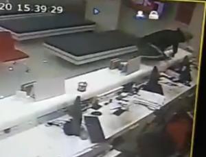 คนร้ายควงปืนบุกเดี่ยวชิงเงินแบงก์ธนชาต สาขาเมืองระยอง กวาดเงินสด 8 หมื่น