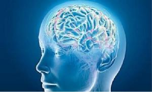 อาหารทำลายสมอง/ดร.แพง ชินพงศ์