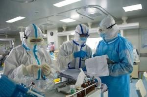 ความหวังมนุษยชาติ! จีนพบลิงทดลองพัฒนาภูมิคุ้มกันสู้โควิด-19 จนหาย