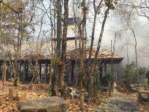 ไฟไหม้ป่ารอบวัดอนาลโยฯ เสียหายนับพันไร่ นกยูง-หมูป่าหนีตายกันน่าสลด