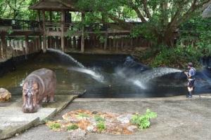รอง ผอ.องค์การสวนสัตว์ฯ ตรวจเยี่ยมการพัฒาและปรับปรุงพื้นที่สวนสัตว์เขาเขียว