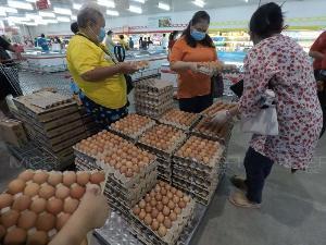 """""""หมอระวี"""" งงไข่ไก่เป็นสินค้าจำเป็น แต่ปล่อยขึ้นราคาตามใจชอบ บี้พาณิชย์เข้าควบคุมราคา-หยุดส่งออกชั่วคราว"""