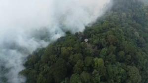 จนท.ระดมดับทั้งวันทั้งคืนไฟไหม้ป่าดอยสุเทพ ยังลามรอยต่อเมือง-หางดง ดันค่า PM 2.5 พุ่งถึง 1,000