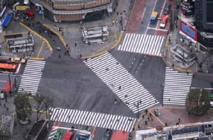 โตเกียวเดียวดาย! หิมะโปรยไวรัสปลิว (ภาพชุด)