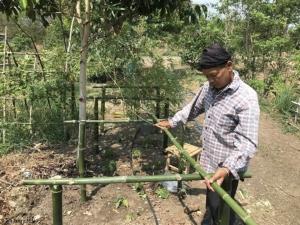 ชุมชนรอบพื้นที่ป่า  ทำโครงการปลูกผักพื้นบ้านปลอดสารเคมี  และส่งเสริมชุมชนจัดตั้งธนาคารเมล็ดพันธุ์ผักตามวิถีภูมิปัญญาชุมชน
