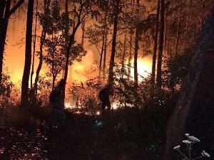ไฟป่า 99.9 % ในบ้านเรา เกิดจากน้ำมือมนุษย์ (ภาพ : ปชส.อส.)